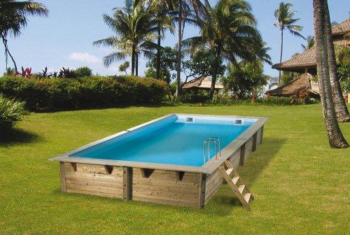 photo piscine bois linea