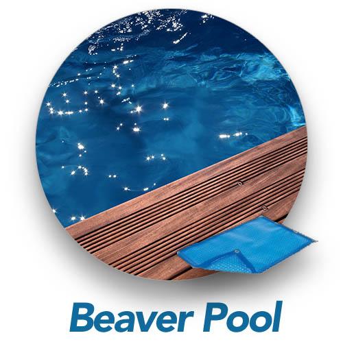 bulle-piscine-bois-luxe-beaver-pool