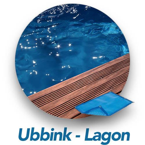 bulle-piscine-bois-luxe-lagon